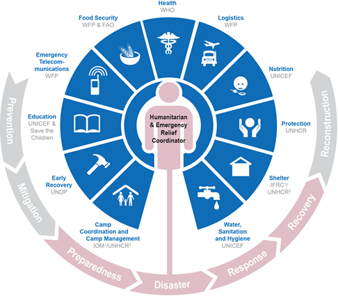 Humanitarian system, cluster approach