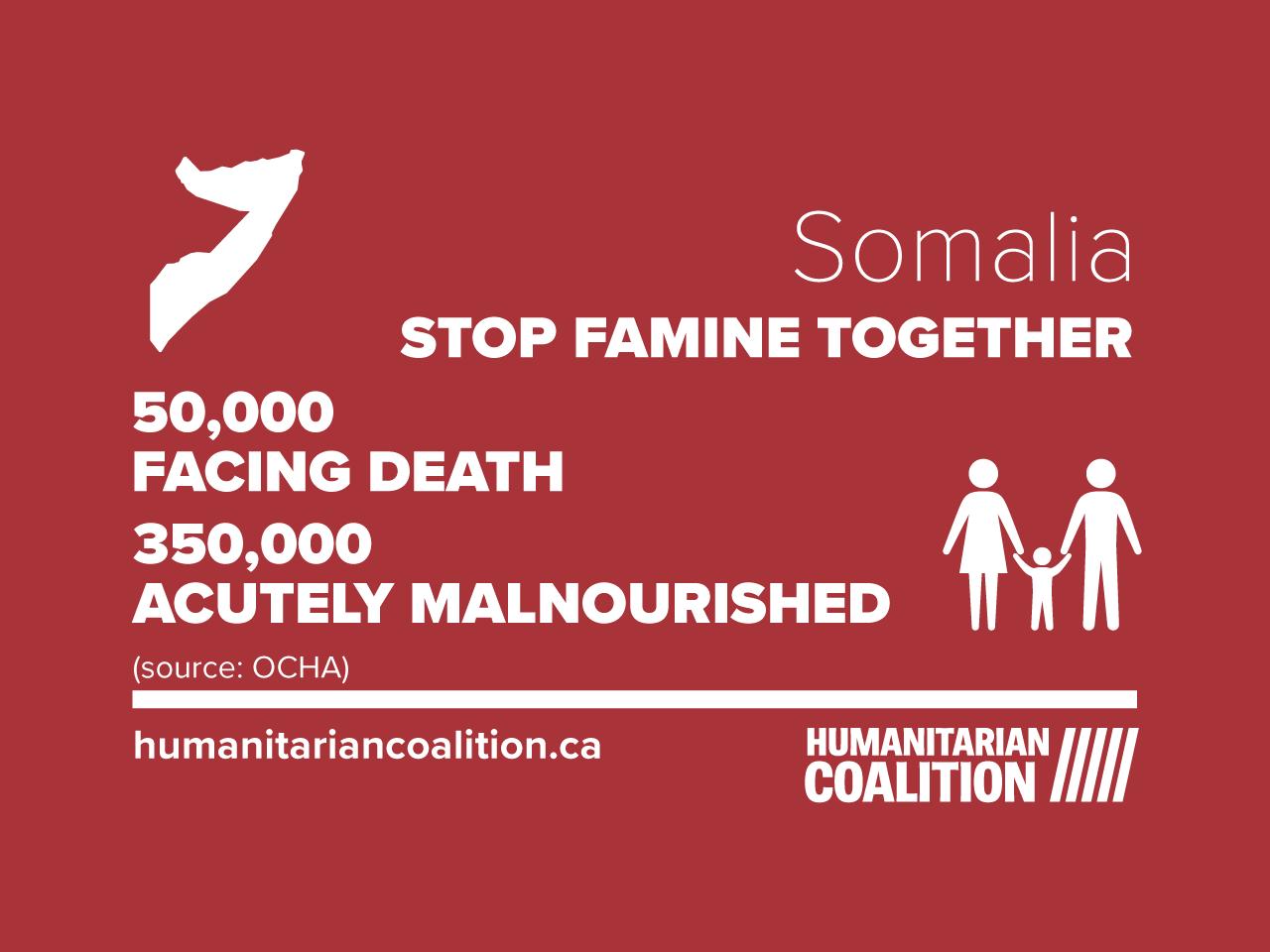 food crisis in Somalia infographic
