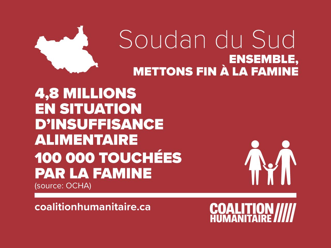 Crise alimentaire Soudan du Sud infographic